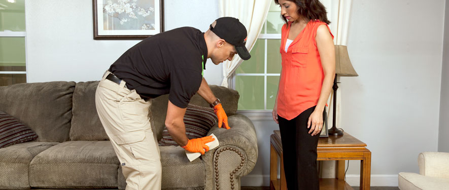 Manteca, CA carpet upholstery cleaning