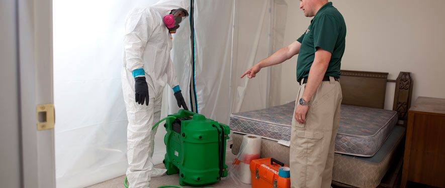 Manteca, CA mold removal process